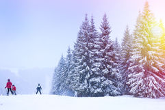 Christmas winter landscape Royalty Free Stock Photography