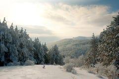Christmas winter mountain Royalty Free Stock Image
