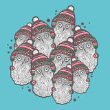 Christmas winter owls. Stock Photography