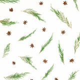 Christmas winter pattern of tree branches and anise on white background. New Year background. Flat lay, top view royalty free stock image