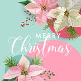 Christmas Winter Poinsettia Flower Banner, Graphic Background, Floral December Invitation, Flyer or Card Royalty Free Stock Image