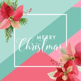 Christmas Winter Poinsettia Flower Banner, Graphic Background, Floral December Invitation, Flyer or Card. Modern Front Page Royalty Free Stock Photos