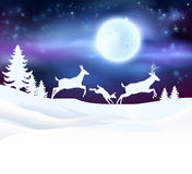 Christmas Winter Scene. A winter Christmas scene featuring a deer family running in the snow in front of a big full moon in snow with Christmas trees Royalty Free Stock Photo