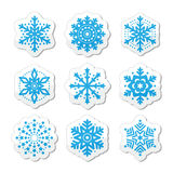 Christmas or winter Snowflakes  icons Royalty Free Stock Image