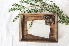 Christmas or winter wedding mock-up scene. Blank cotton paper greeting cards, old wooden tray, pine cones and green. Eucalyptus parvifolia branch, white bed stock images