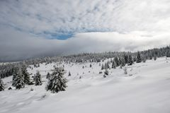 Christmas winter wonderland in the mountains with snow covered t. Christmas winter wonderland in the mountains. Fir trees covered with snow royalty free stock image