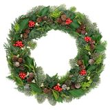Christmas and Winter Wreath. Decoration with holly, mistletoe, juniper fir, blue spruce, cedar, pine cones and ivy leaves on white background Royalty Free Stock Images