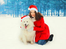 Christmas woman with white Samoyed dog in santa red hats in winter Royalty Free Stock Photos
