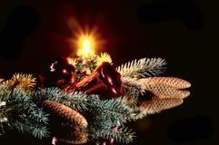 Christmas wonderful still life. Christmas wonderful still life on a black Royalty Free Stock Photography
