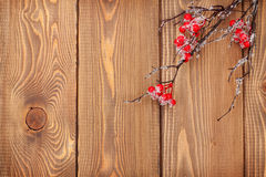 Christmas wooden background with holly berry branch Stock Photography