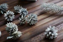 Christmas woods Royalty Free Stock Photo
