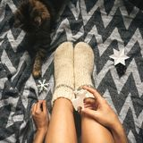 Christmas woolen socks on legs and woman holding stylish reindeer toy, and cute cat playing with holiday ornaments in festive. Room. Top view. Atmospheric cozy royalty free stock images