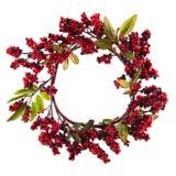 Christmas wreath Royalty Free Stock Photos