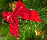 Christmas wreath. Green round Christmas wreath on white background Royalty Free Stock Photos