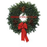 Christmas wreath 2009. New christmas wreath for 2009 in 3d and on white stock illustration