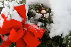 Christmas Wreath. Covered in snow Stock Images