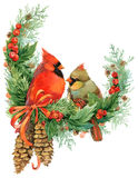 Christmas Wreath And Cute Birds. Watercolor Illustration Stock Photos
