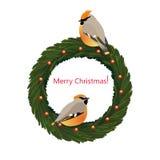 Christmas wreath with birds Stock Image