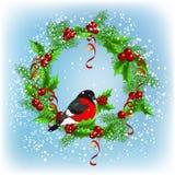 Christmas wreath with bullfinch Stock Image