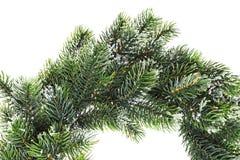 Christmas wreath closeup Stock Image