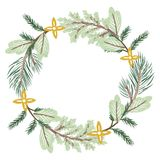 Christmas Wreath conifer branches. On white background Royalty Free Stock Images