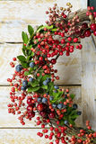 Christmas wreath of evergreen and nandian network berries Stock Image