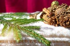 Christmas wreath and fir branch royalty free stock photos