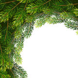Christmas wreath frame from fir tree branches. Vector illustration for your design Stock Images