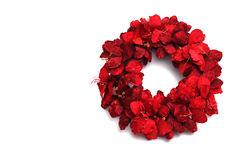Christmas wreath isolated on white Royalty Free Stock Photography