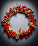 Christmas wreath. Made of rose hips and cassia cinnamon Royalty Free Stock Photo