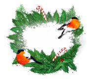 Christmas wreath on a white background. royalty free stock photos