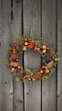 Christmas wreath with pine cones and nuts. And juniper Royalty Free Stock Photography