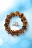 Christmas wreath with pine cones  on white background Royalty Free Stock Image