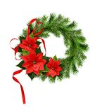 Christmas wreath from pine twigs and poinsettia flowers with ribb Stock Images