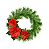 Christmas wreath from pine twigs and ponsettia flowers Royalty Free Stock Images