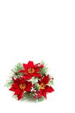 Christmas wreath, poinsettia flowers Royalty Free Stock Images