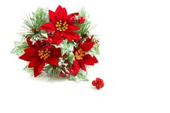 Christmas wreath, poinsettia flowers Royalty Free Stock Photos