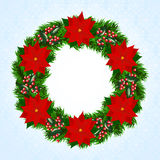 Christmas wreath with poinsettia Stock Images