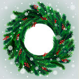 Christmas wreath with red berries Royalty Free Stock Photos