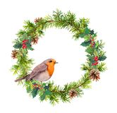 Christmas wreath, robin bird. Christmas watercolor illustration stock illustration