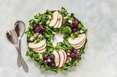 Christmas Wreath Salad royalty free stock photos