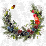 Christmas wreath with spruce branches and berries for your decor. Background for your text Stock Photography