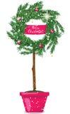 Christmas wreath topiary Stock Photo