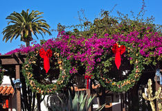 Christmas Wreaths Purple Bouganvilla Old San Diego Royalty Free Stock Image