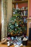 Christmas - Xmas Holiday Stock Images