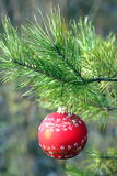 christmass шарика Стоковое Фото