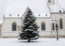 Christmass结构树 库存图片