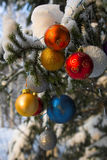 Christmass balls Royalty Free Stock Photography