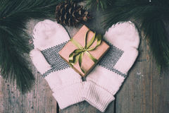 Christmass Gift Box And Mittens Royalty Free Stock Photos