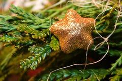 Christmass gwiazda fotografia royalty free
